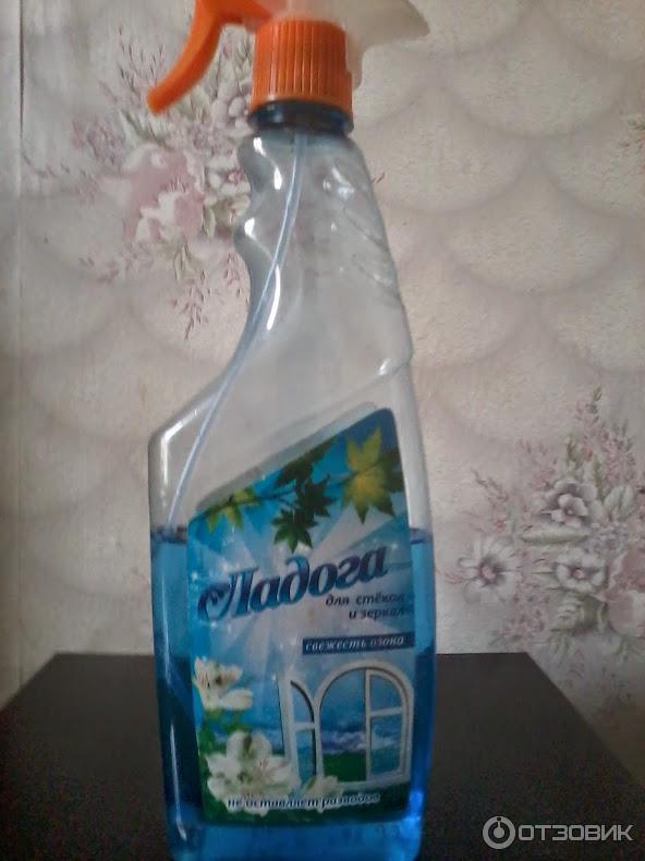 Чистящее средство ладога цена фото