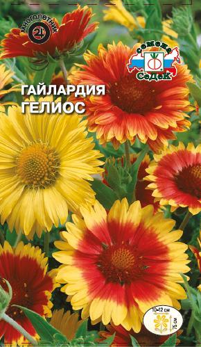 гелиос цветок фото