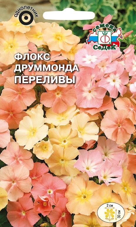 производители, зарекомендовавшие флокс друммонда период цветения в северных SAS